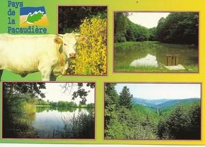 carte-postal-sfl2