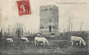 le-donjon-de-lespinasse-14