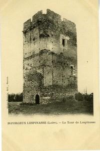 le-donjon-de-lespinasse-7