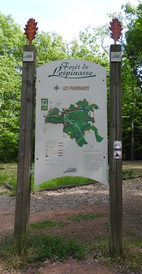 la-foret-de-lespinasse34