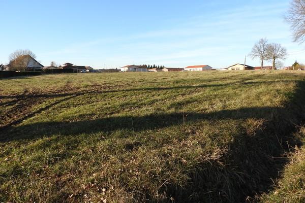 terrains-a-vendre-saint-forgeux-lespinasse10