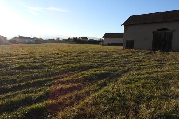 terrains-a-vendre-saint-forgeux-lespinasse13